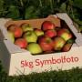 ApfelMusterKiste5kg
